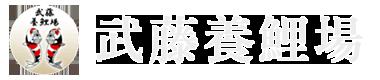 錦鯉の武藤養鯉場|錦鯉販売・通販|鑑賞池設計施工|錦鯉・金魚なら